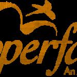 CopperFalls Salon and Spa